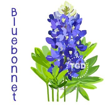 Bluebonnet - Bluebonnet clip art, Bluebonnet Printable Tra