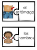 Body Part Puzzles In Spanish