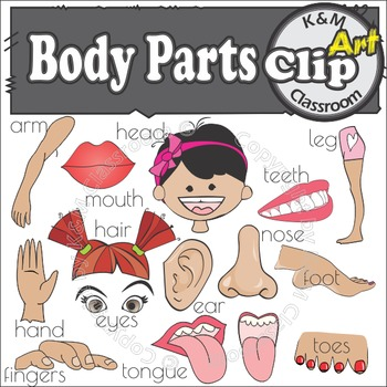 Body Parts - Clip Art
