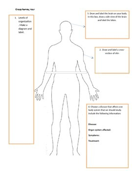 Body Systems Diagram