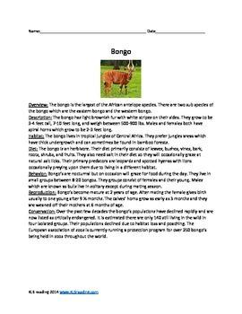 Bongo - antelope endangere species - article questions act