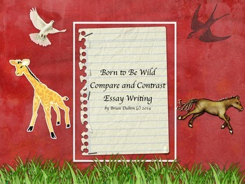 Born to Be Wild – Compare and Contrast Writing