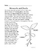 Botany: Monocots and Dicots