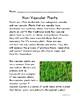 Botany: Non-vascular Plants