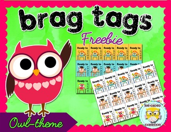 Brag Tags for Classroom Behaviors Owl theme