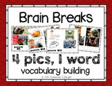 Brain Break 4 Pics, One Word