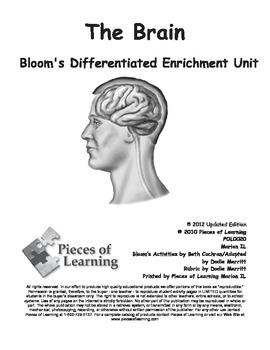 Brain - Differentiated Blooms Enrichment Unit