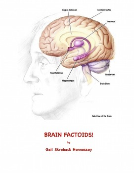 Brain Factoids!
