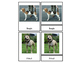 Breeds of Dogs Three Part Cards