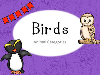 Brilliant Birds PPT, 2 Worksheets, and Riddle Game
