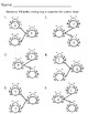 Bugs and Spring Growing - Number Bond Worksheets