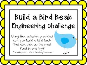 Build a Bird Beak: Engineering Challenge Project ~ Great S