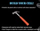 Build a Cell Interactive Notes and PowerPoint