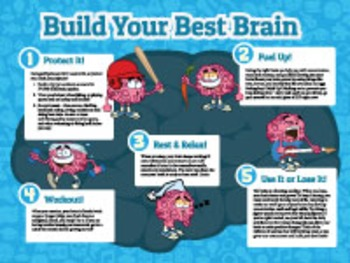 Brain Poster - Build Your Best Brain!