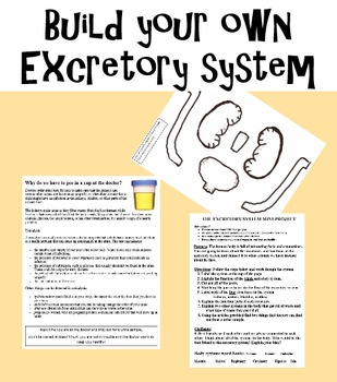 Build your own excretory system