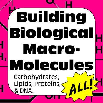 Biochemistry Building Biological Macromolecules: ALL Biomolecules