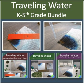 Bundle:  Comparing how Vascular and Nonvascular Plants Tra