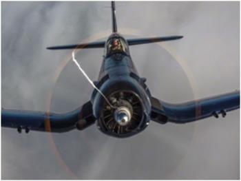 Bundle of 2 - World Wars I & II - America's Flying Aces