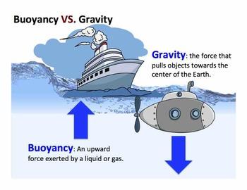 Buoyancy vs. Gravity
