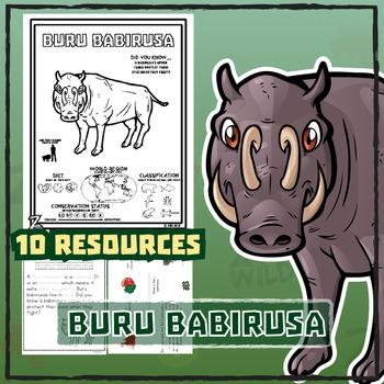 Buru Babirusa -- 10 Resources -- Coloring Pages, Reading &