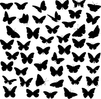 ButterFly silhouette digital clipart