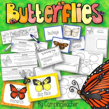 Butterfly Research Set with Study Activity, Matching Cards