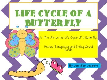 Butterflies: Life Cycle & More Integrated Science, Writing