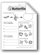 Butterflies (Thinking Skills)