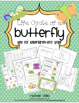 Butterfly Life Cycle {A Common Core Aligned Cross-Curricul