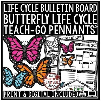 Butterfly Life Cycle Activity • Teach-Go Pennants