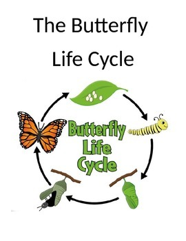 Butterfly Life Cycle Book and Sequencing Cards