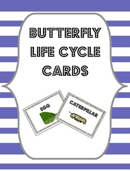 Butterfly Life Cycle Cards {Flashcards, Sorting Cards or B