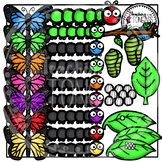 Butterfly Life Cycle Clipart Bundle