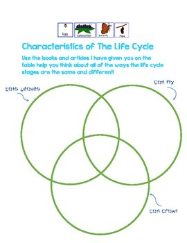 Butterfly Life Cycle Compare & Contrast Activity