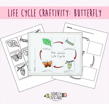 Butterfly Life Cycle Craftivity