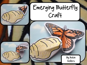 Butterfly Life Cycle {Emerging Butterfly Craft and Life Cy