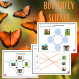 Butterfly Life Cycle Graphic Organizer {FREE}