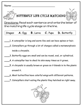 Butterfly Life Cycle Matching Worksheet