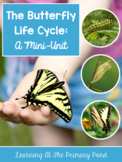Butterfly Life Cycle Unit for Preschool, Kindergarten, or