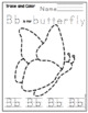 """Butterfly Life Cycle """"No Prep"""""""