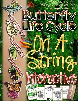 BUTTERFLY ON A STRING: BUTTERFLY LIFE CYCLE CREATE, FACTS,