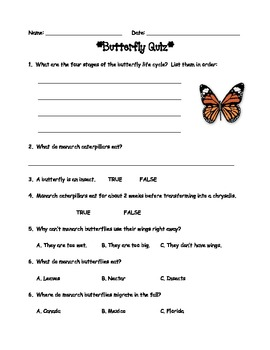Butterfly Life Cycle Quiz & Word Search