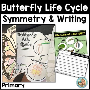 Spring Activities Kindergarten Butterfly Life Cycle & Symm