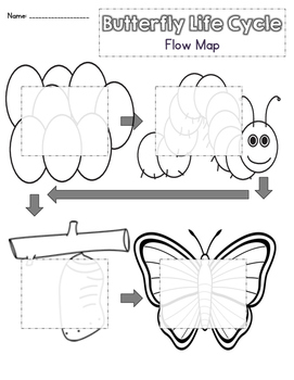 Butterfly Life Cycle Writing Flow Map FREEBIE