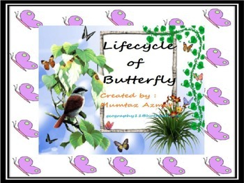 Butterfly: Life cycle of Butterfly.