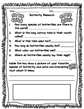 Butterfly Research Activity