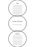Butterfly Research Report Outline {FREEBIE}