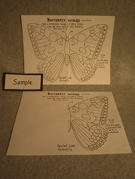 Draw the Butterfly's Other Wing. Fun Craft Art