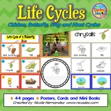 Life Cycles - Posters, Cards and More!