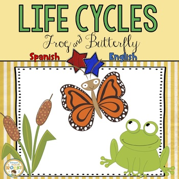 Butterfly and Frog Life Cycle (Spanish)